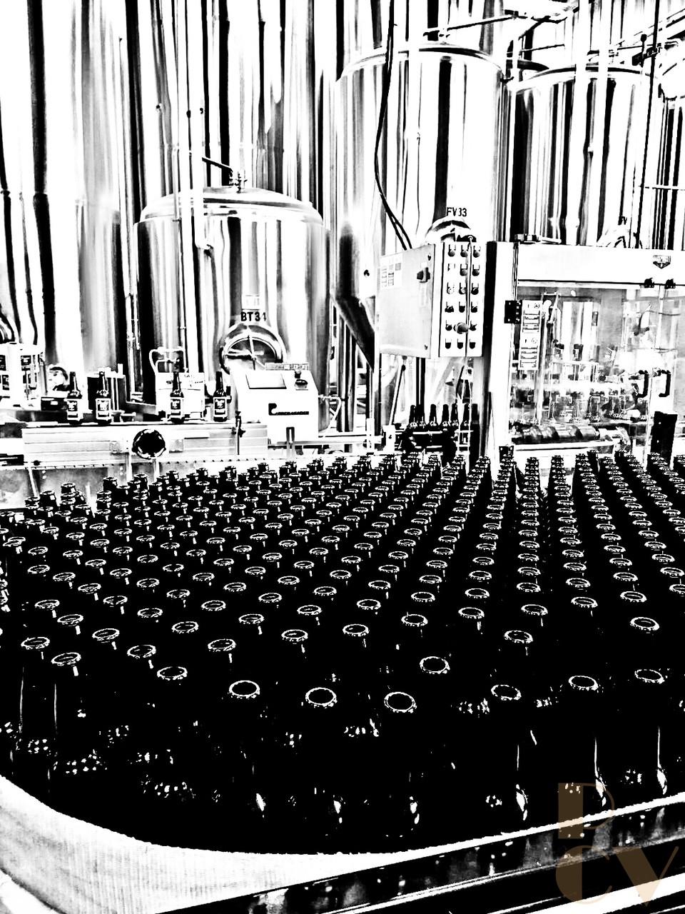 Vasos, botellas y cristales 4